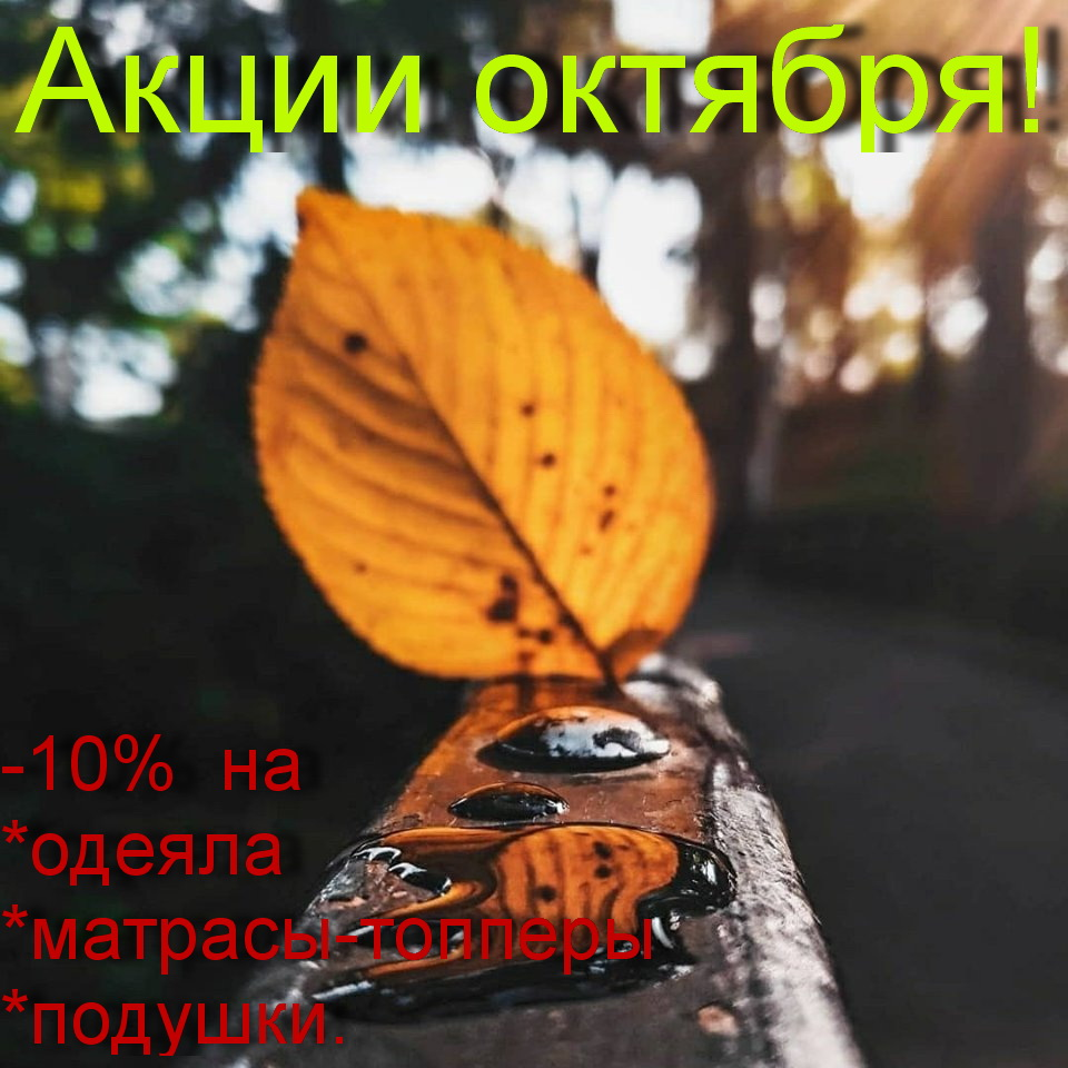 Акции на октябрь